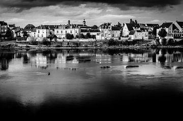 Huizen aan de oevers van de Loire in Saumur in Frankrijk in zwart-wit van Dieter Walther