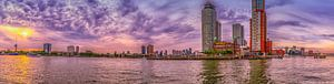 Rotterdam - Kade euromast en Wilhelmina in zonsondergang
