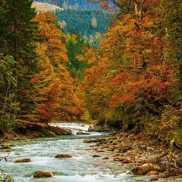 Herfst in het dal van Denis Feiner