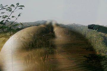 naakt in landschap van Cor Heijnen