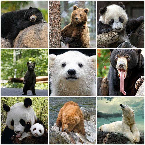 beren collage van Marja Hoebe