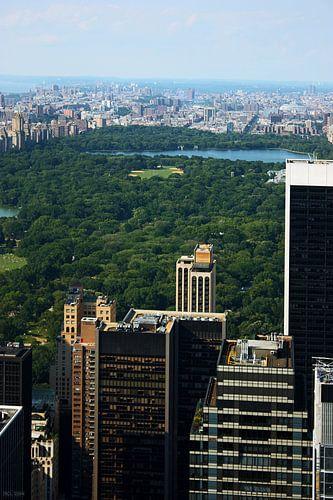 new york city ... concrete jungle III