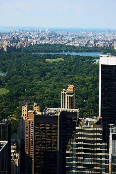 new york city ... concrete jungle III van Meleah Fotografie