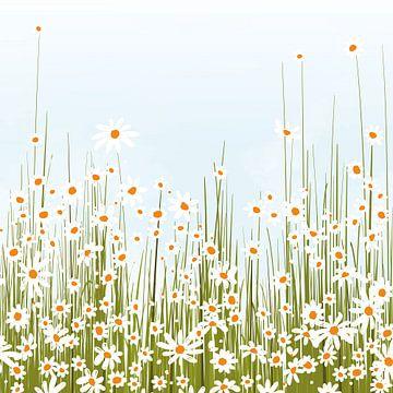 Bloemenveld van Color Square
