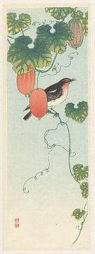 Zangvogel in komkommerplant, Ohara Koson