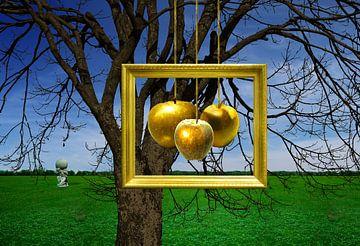 De Gouden Appels in de tuin van de Hesperiden van Ine Tresoor