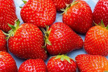 Frische Erdbeeren gepflückt von Daan Kloeg