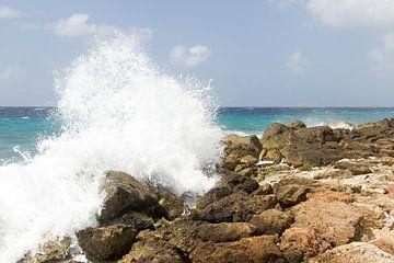 Curacao, ruige kust no. 5 van Arnoud Kunst