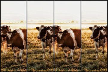 Koeien von Alied Kreijkes-van De Belt