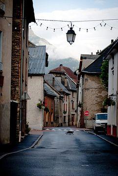 Bourg d'Osains van Lisette Breur