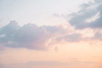 Zonsondergang Boven Het IJsselmeer Bij Urk van Henrike Schenk