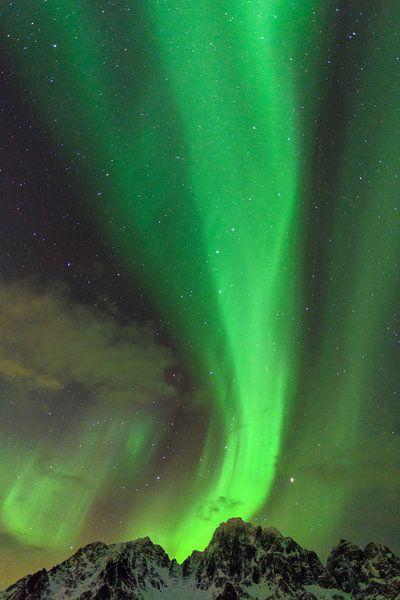 Noorderlicht in de nacht boven de Lofoten in Noord-Noorwegen van Sjoerd van der Wal