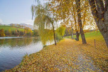 Herfst in Ritzensee in oostenrijk met gele bladeren van Marco Leeggangers