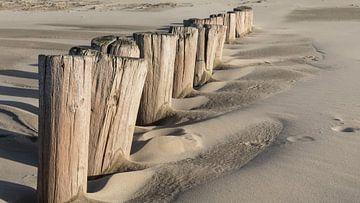 Aan het strand van Peter Korevaar