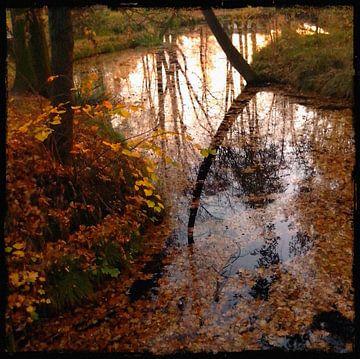 Herfst van Kuba Bartyński