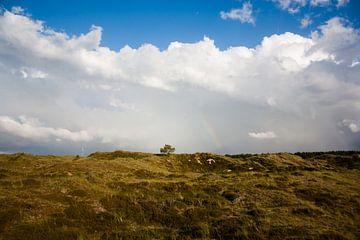 Terschelling landschap van Evelyne Renske