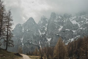 Col de montagne dans les Alpes juliennes sur Paulien van der Werf