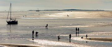Strand Noordsvaarder Terschelling van Roel Ovinge