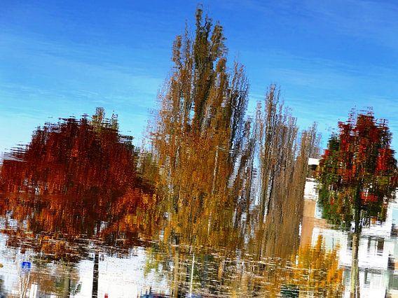 Tree Magic 69 van MoArt (Maurice Heuts)