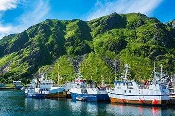 Fischerboote auf den Lofoten in Norwegen von Rico Ködder