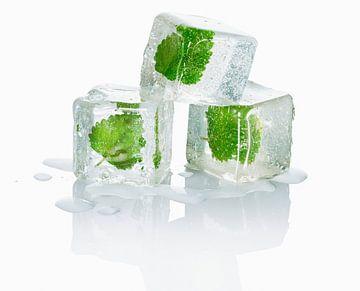 12340506 Drie ijsblokjes met melisseblaadjes erin van BeeldigBeeld Food & Lifestyle