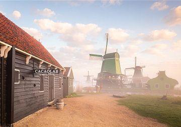 Retour dans le temps sur Arjen Noord