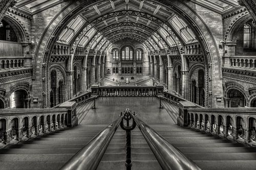Darwins Temple von Bert Beckers
