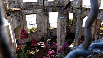 Alcatraz Ruine von Marek Bednarek