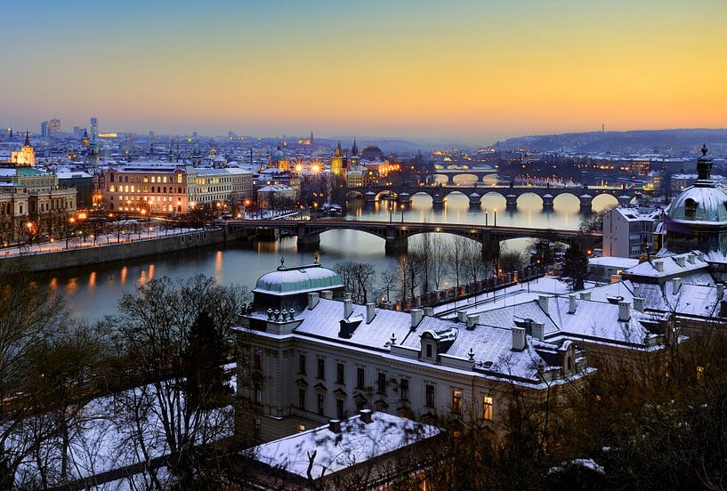 De bruggen van Praag van Roy Poots