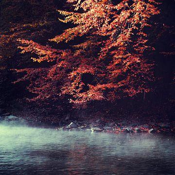 Herfstochtend bij de rivier van Dirk Wüstenhagen