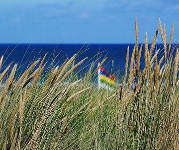 Terschellinger strand bij Oosterend van Elfriede de Jonge Boeree
