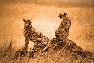 Cheetah couple van Rianne Magic moments