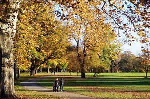 Herbst Spaziergang im Park