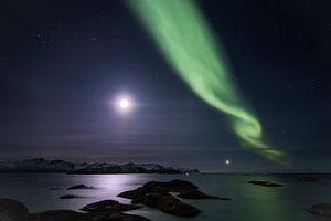 Aurora bij maanlicht over de fjorden van