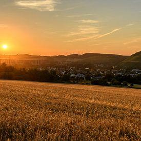 golden summer van Heinz Grates