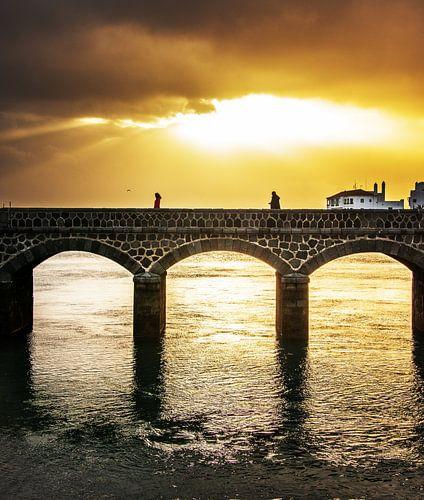 De brug van Harrie Muis