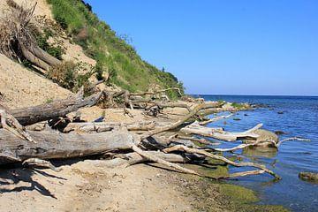 Am Südstrand von Göhren van Ostsee Bilder