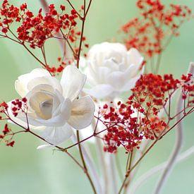 Fresh rose petals still life sur Tanja Riedel