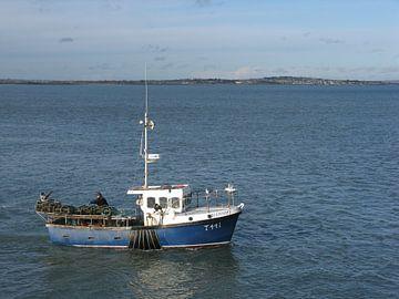 Vissersboot T441 van Rafael Delaedt