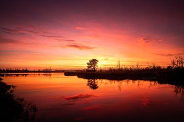 Magischer Sonnenaufgang von Jeroen Mikkers