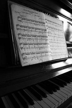 Pianol zwart-wit beeld von Falko Follert