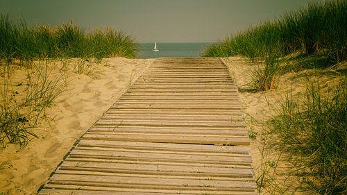 Beachroad van Lex Schulte