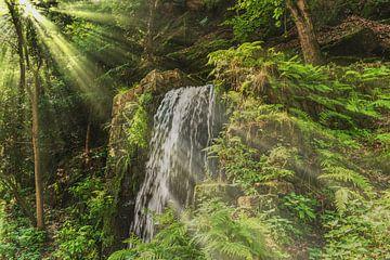 waterfall van Gunter Kirsch