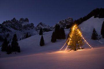 Mon sapin de Noël préféré sur Coen Weesjes
