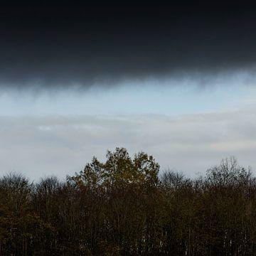 Donkere wolken in een herfstbos van Rene  den Engelsman