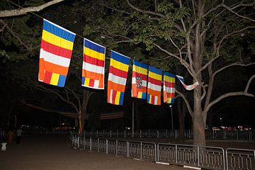 kleurrijke vlag, Boeddhisme, Sri Lanka. van Rony Coevoet