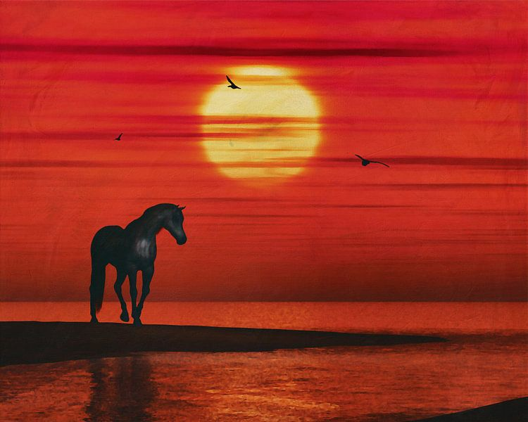Een paard kijkt naar de zonsondergang boven de zee van Jan Keteleer