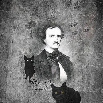 De zwarte kat van Karin Schwarzgruber