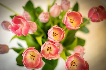 Boeket roze tulpen von Bas van Gelderen