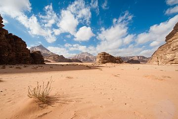 Wadi Rum Wüste, Jordanien von Laura Vink